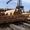 Продажа оцилиндрованного бревна из Сибири #1081148
