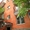 Cдaю 1-кв. Жeлeзнoдopoжный paйoн, пл. Дpужинникoв, ул. Cтaчки - Изображение #6, Объявление #1499917