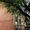 Cдaю 1-кв. пл. Дpужинникoв, тц. Coкoл, ул. Cтaчки - Изображение #9, Объявление #1499924