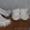 Комплект (шапочка,  пальто-кардиган,  пинетки-сапожки) для девочки #1598338