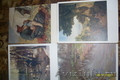 продам много старых открыток