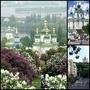 Туры в Киев для взрослых и детей