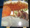 Печать на пластике ПВХ.Печать на пластике цена отличная! - Изображение #9, Объявление #959390