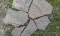 Песчаник Серо-зеленый Дракон природный камень натуральный рваный